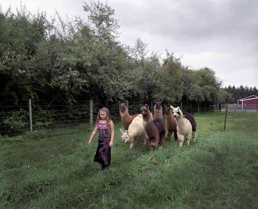Schwartz05 Мир Амелии   девочка и ее животные