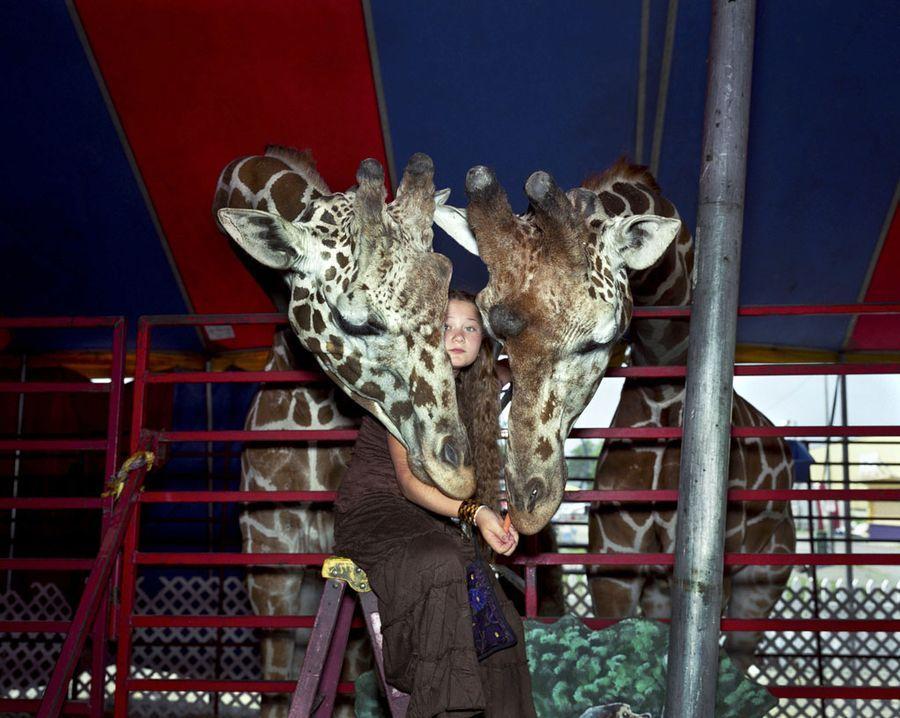 Schwartz07 Мир Амелии   девочка и ее животные