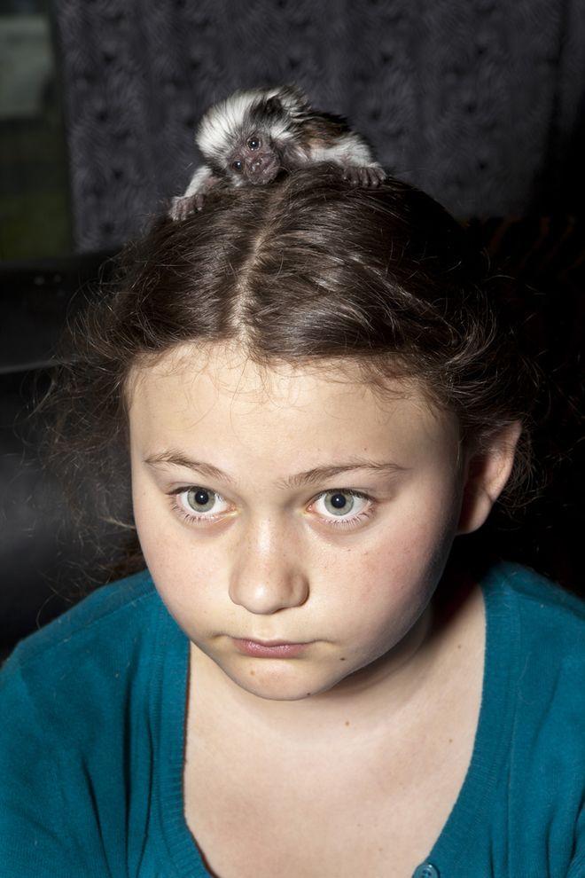 Schwartz12 Мир Амелии   девочка и ее животные