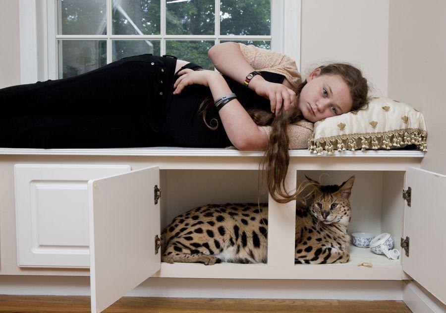 Schwartz14 Мир Амелии   девочка и ее животные