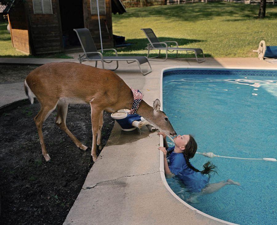 Schwartz18 Мир Амелии   девочка и ее животные