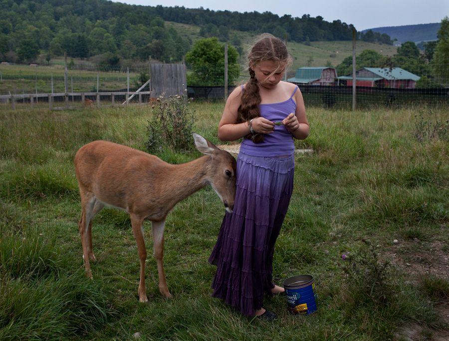Schwartz20 Мир Амелии   девочка и ее животные