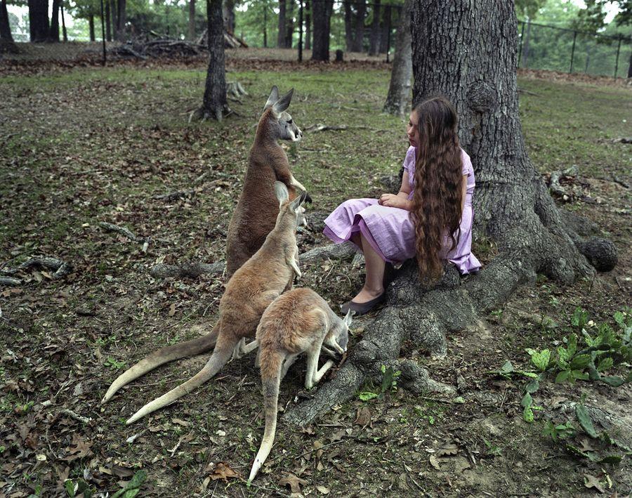 Schwartz21 Мир Амелии   девочка и ее животные