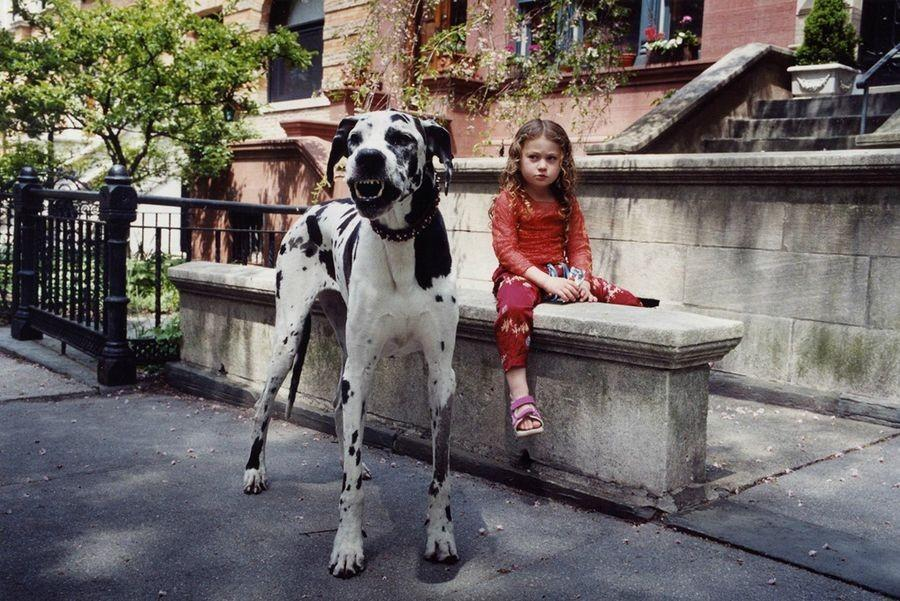 Schwartz24 Мир Амелии   девочка и ее животные