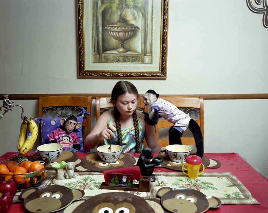Schwartz26 Мир Амелии   девочка и ее животные