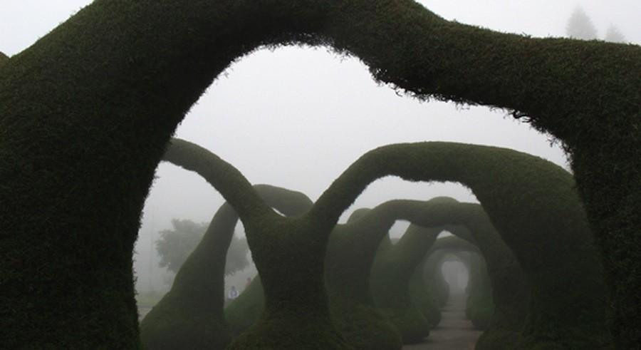 parks07 10 самых необычных парков мира