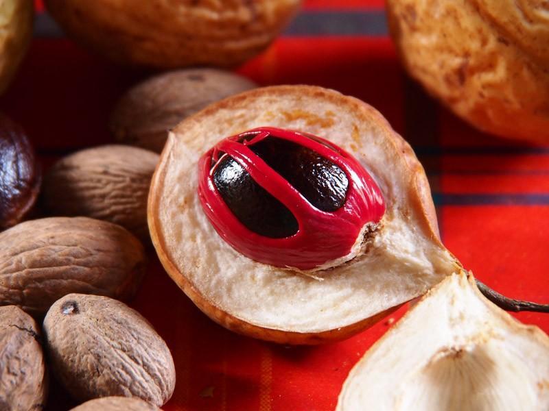poisony06 10 ядовитых фруктов и овощей, которые мы едим каждый день