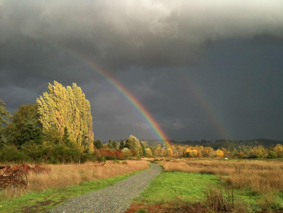 rainbows12
