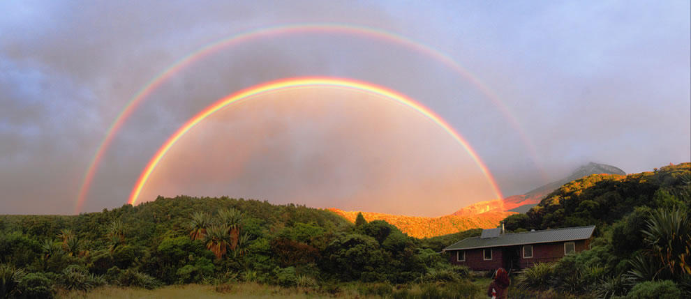 rainbows21