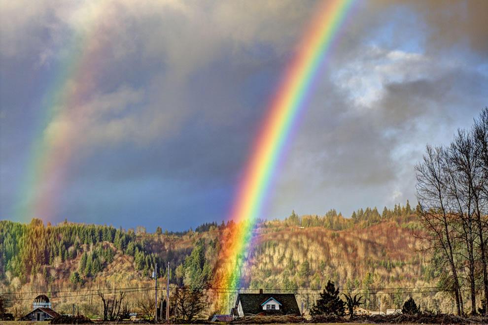 rainbows38