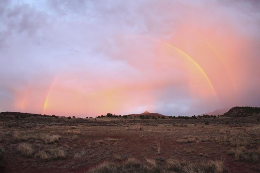 rainbows39