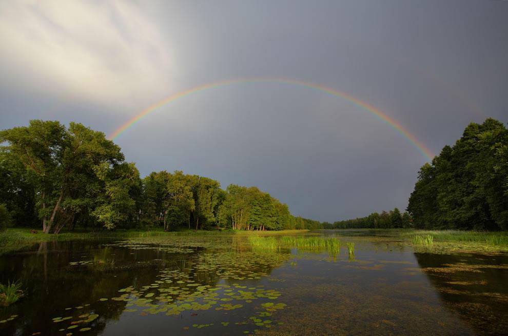 rainbows41