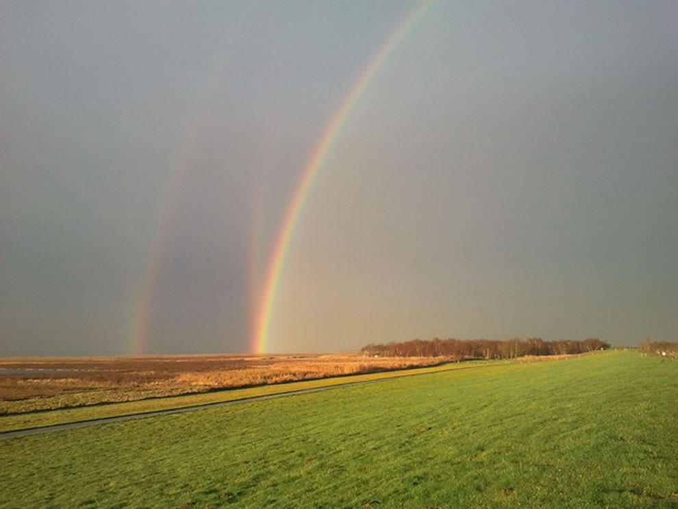 rainbows43