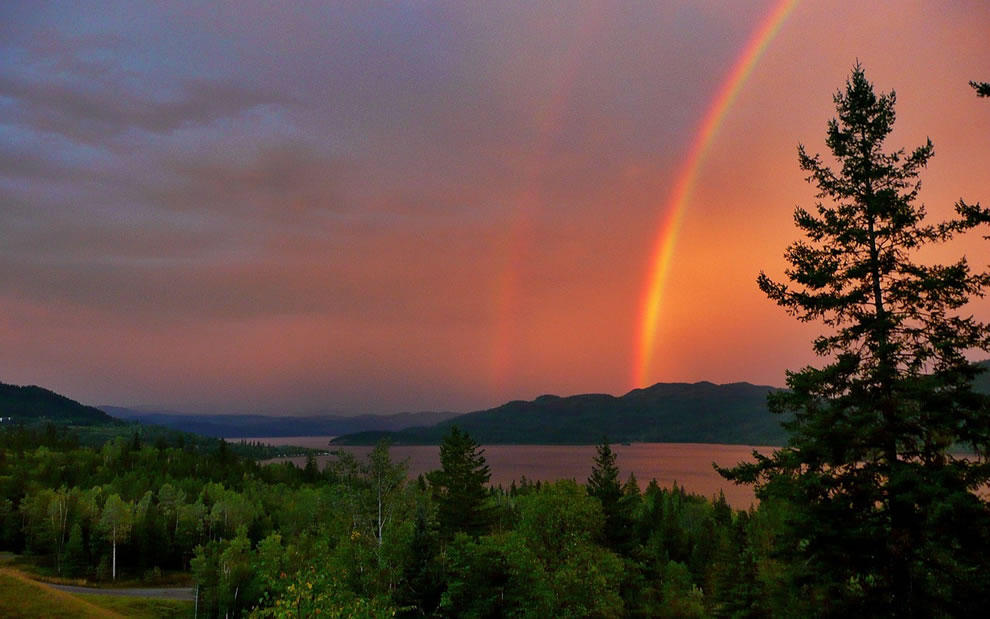 rainbows44