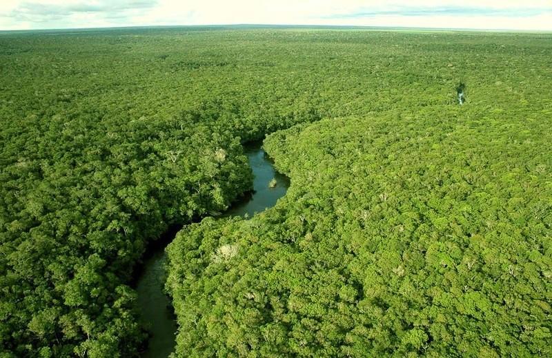 Amazonas01 ������� ��������������� �� ����� ��������