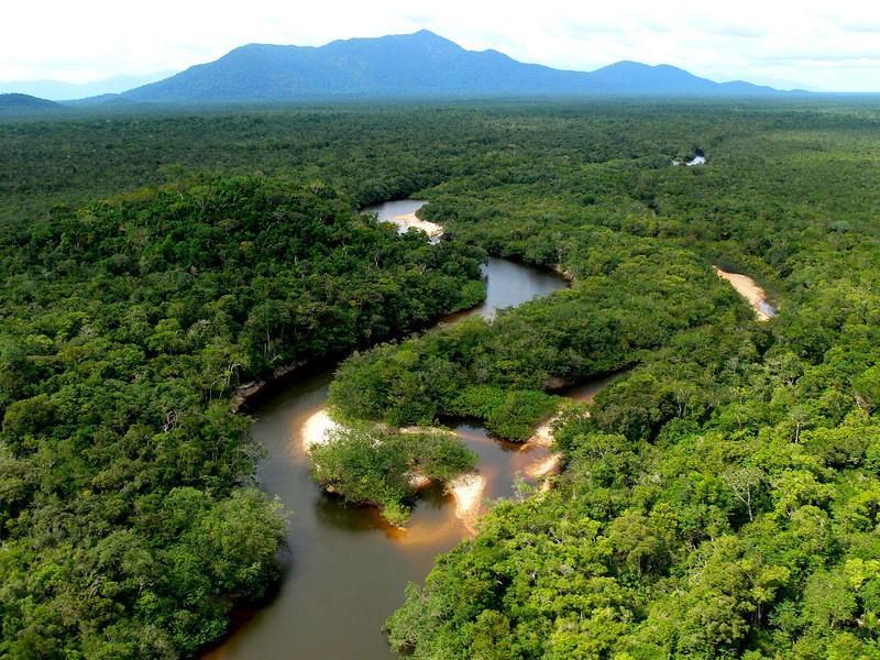 Amazonas02 Большое фотопутешествие по лесам Амазонки