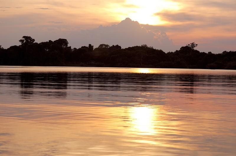 Amazonas23 Большое фотопутешествие по лесам Амазонки