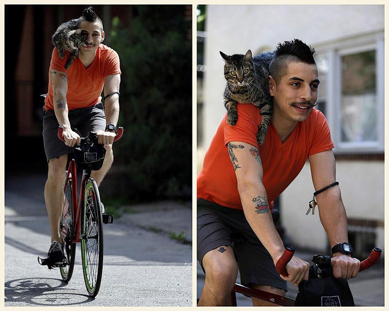 BIGPIC3 Велосипедист и его кошка