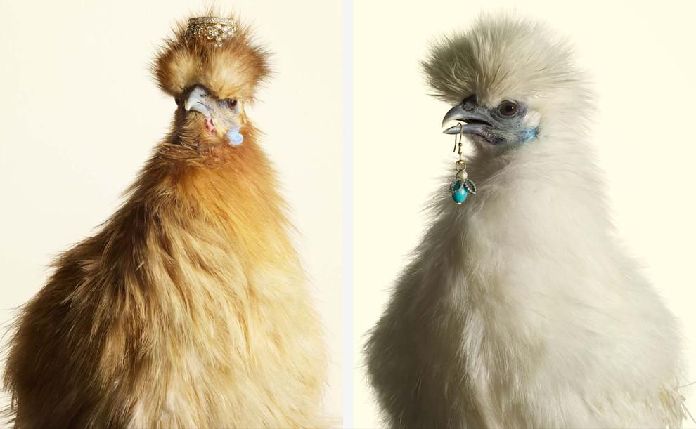 Jewelry01 Необычный взгляд на украшения от Питера Липпмана
