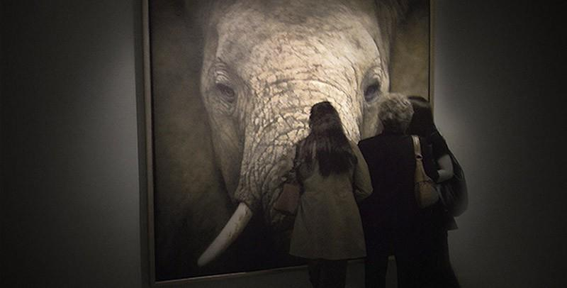 drawings18 Incredibly realistic paintings like photographs