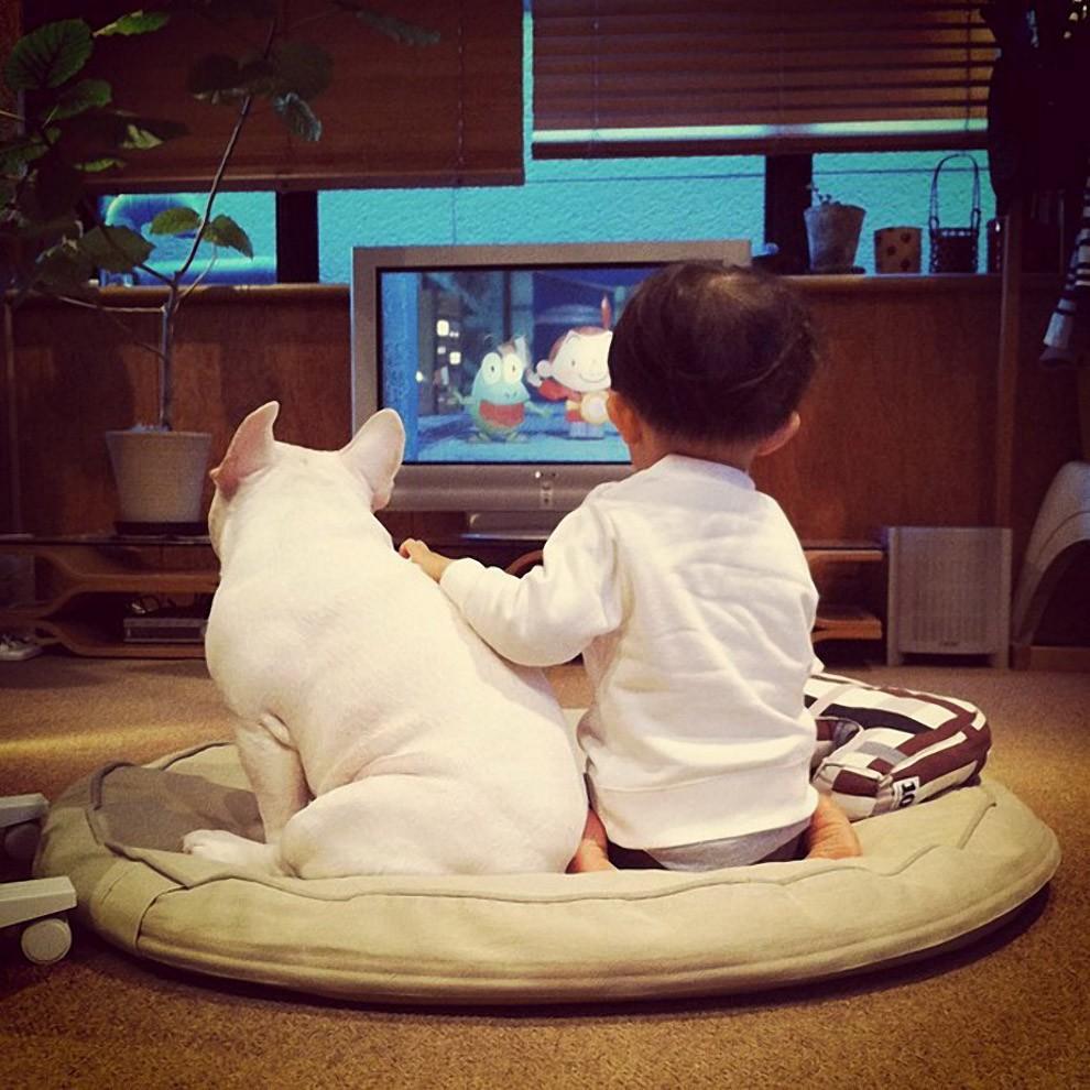 kidsanimals08 10 самых трогательных историй общения детей и животных