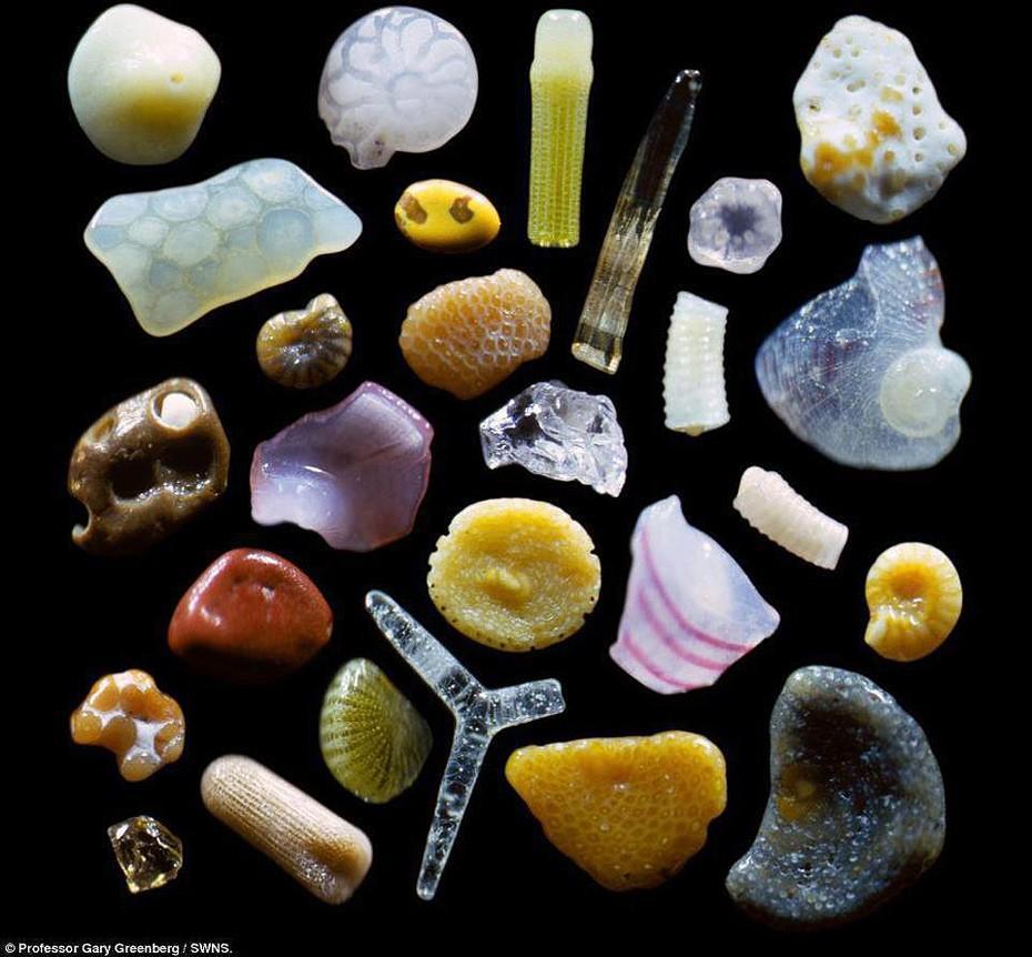 Невероятные микрофотографии Гарри Гринберга (Gary Greenberg) показывают, что каждая песчинка - это целый мир цвета и...