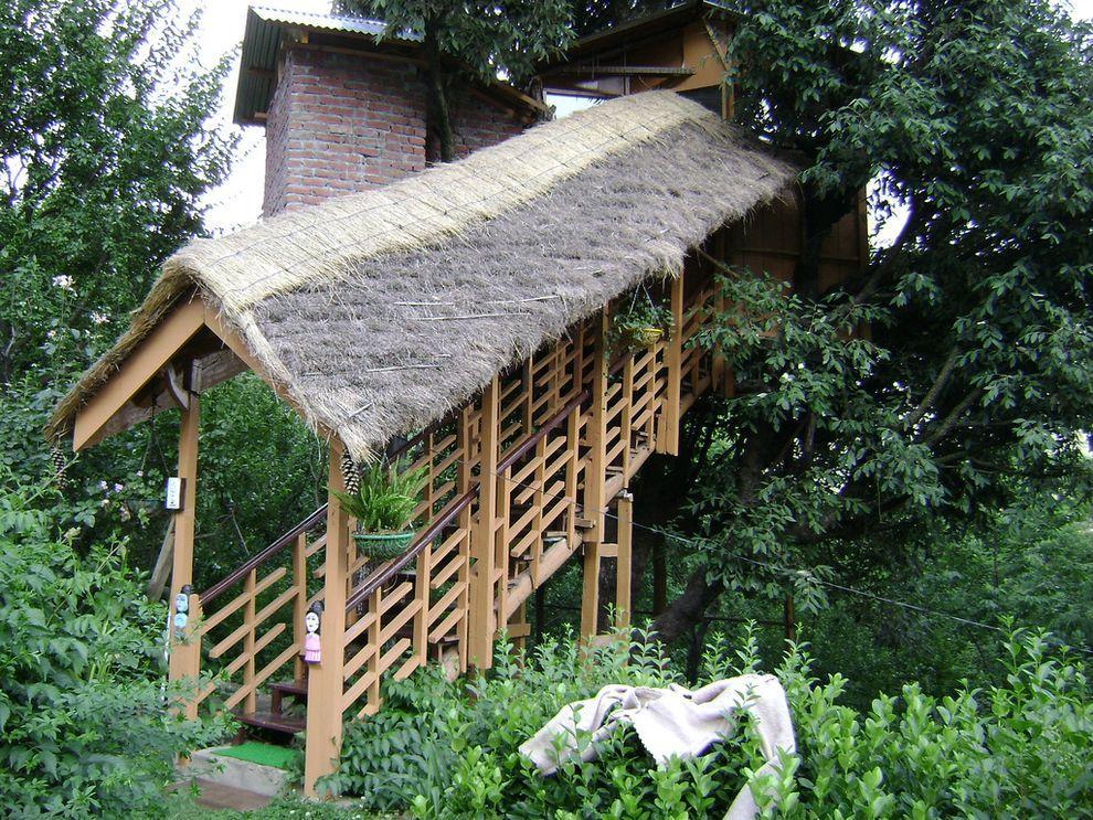 ontrees02 10 самых удивительных отелей на деревьях