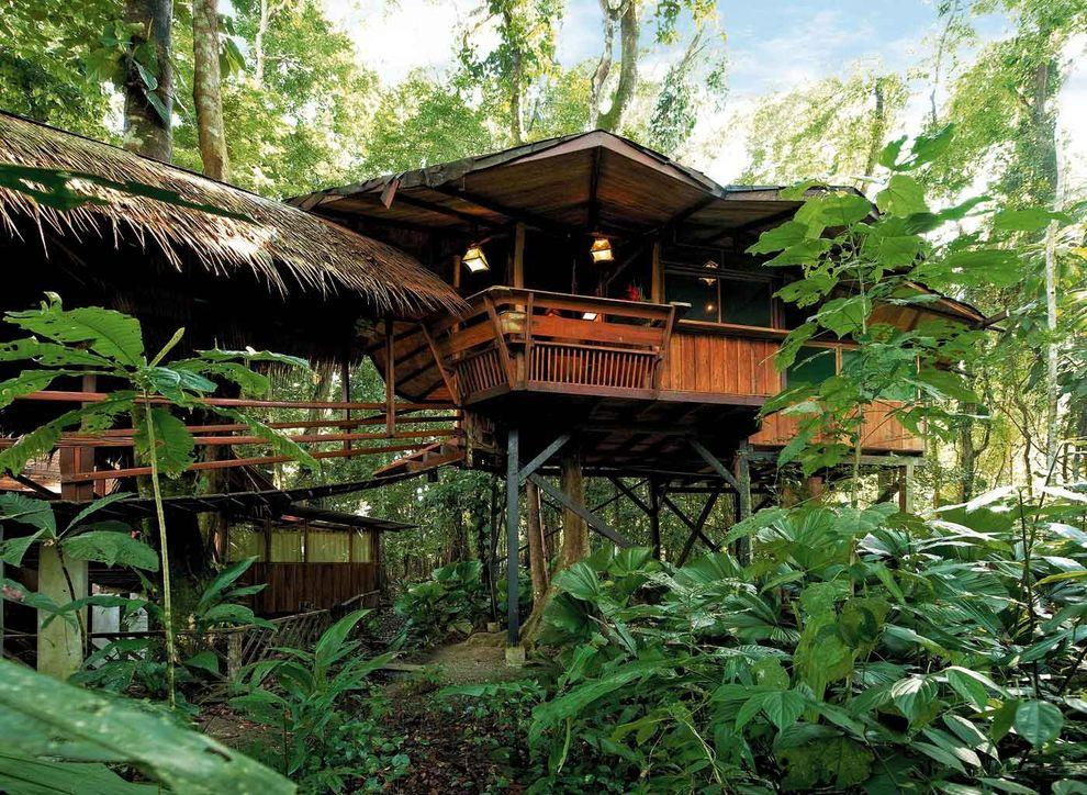 ontrees06 10 самых удивительных отелей на деревьях