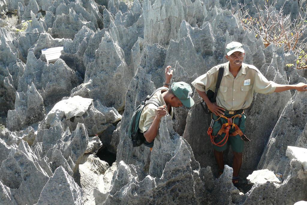 537723673 28091adce7 b Каменный лес на Мадагаскаре
