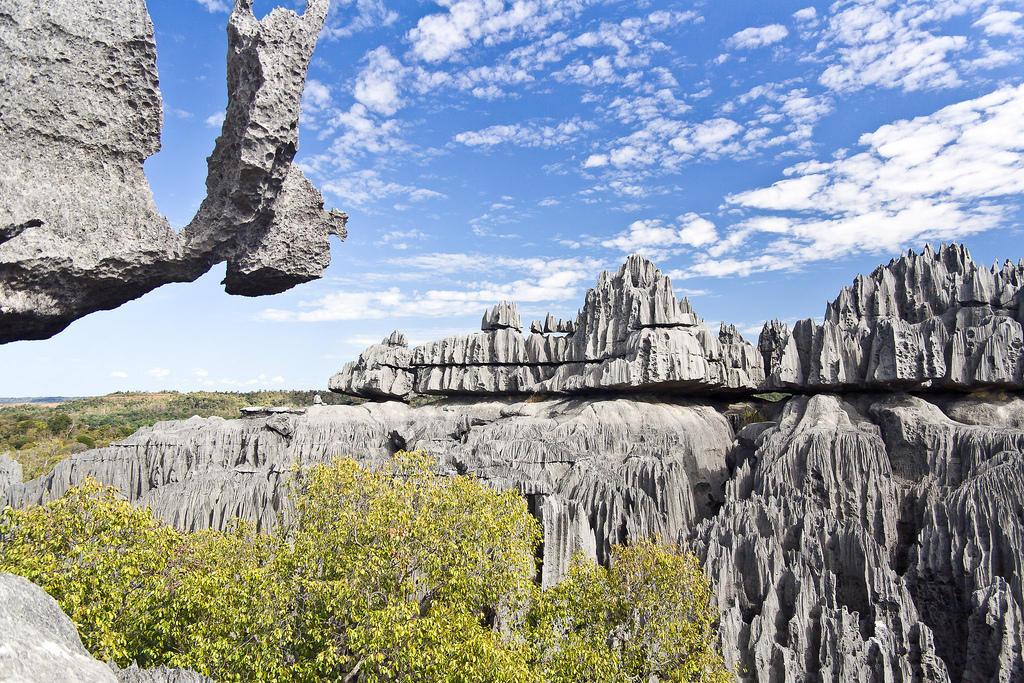 6668558779 3df9253d2f b Каменный лес на Мадагаскаре