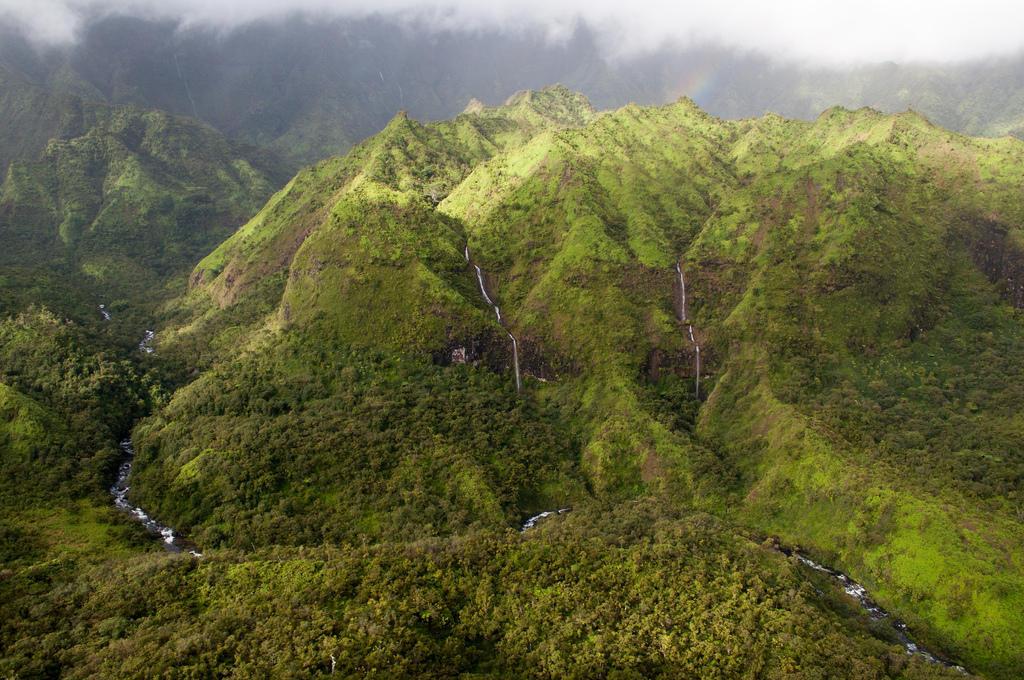 8448379551 f309ff74a5 b Стена слез: водопад Хонокохау на Гавайях