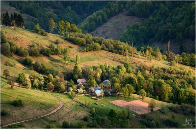 Carpathians54 800x529 Буйство природы в Карпатах