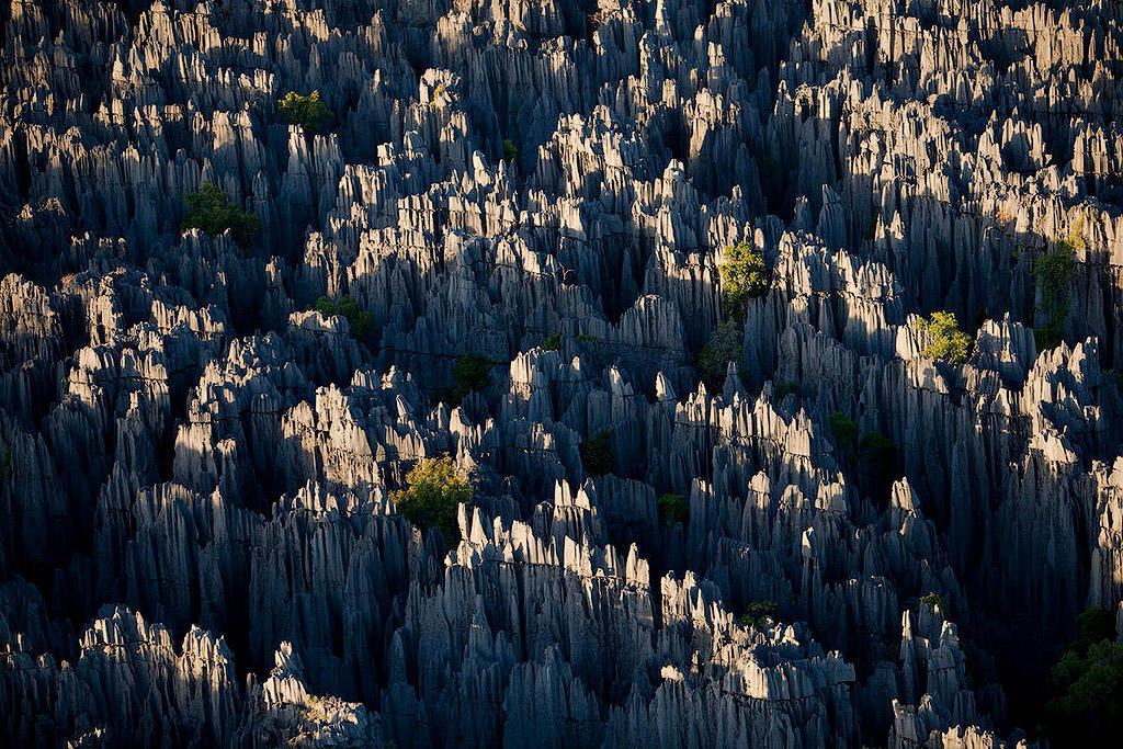 MM7820 090512 14293 Каменный лес на Мадагаскаре