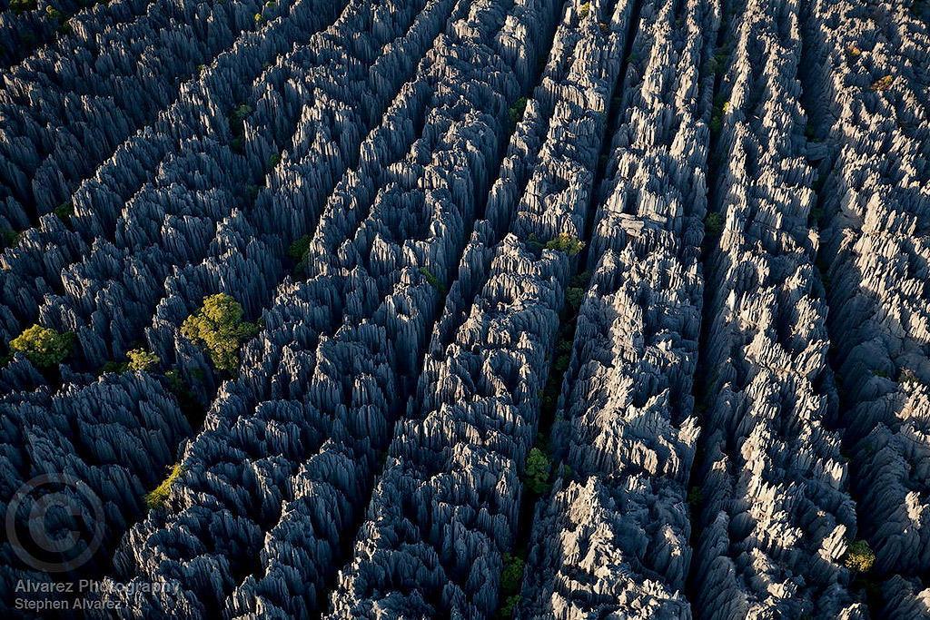 MM7820 090512 15046 xgaplus Каменный лес на Мадагаскаре