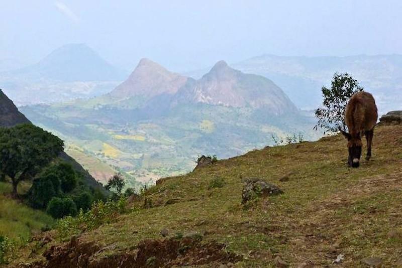 RoofofAfrica02 «Крыша Африки»: впечатляющая красота Эфиопского нагорья