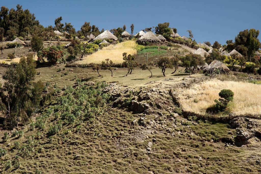 RoofofAfrica13 «Крыша Африки»: впечатляющая красота Эфиопского нагорья