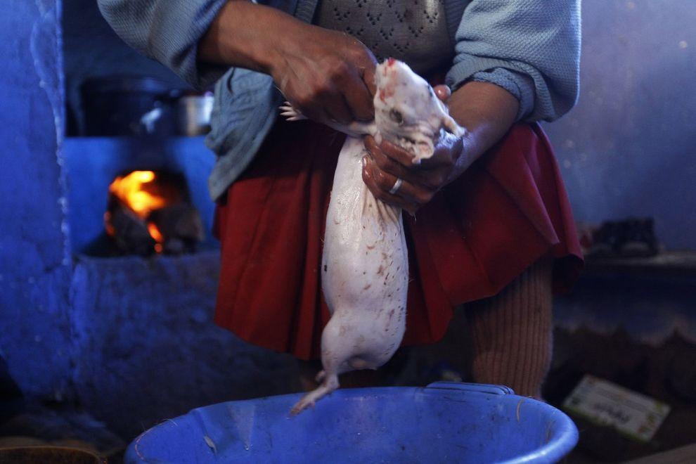 extremefood09 Самая экстремальная еда, которой можно угоститься на этой планете