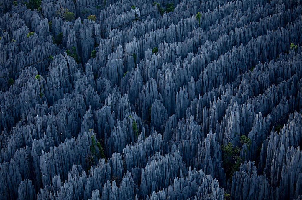 meZfloG Каменный лес на Мадагаскаре
