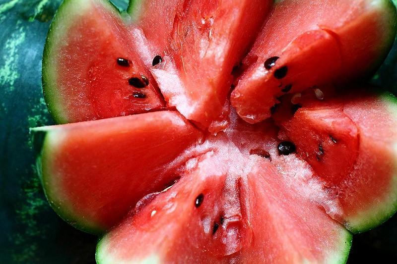 melon00 Арбузное счастье в 10 удивительных рецептах