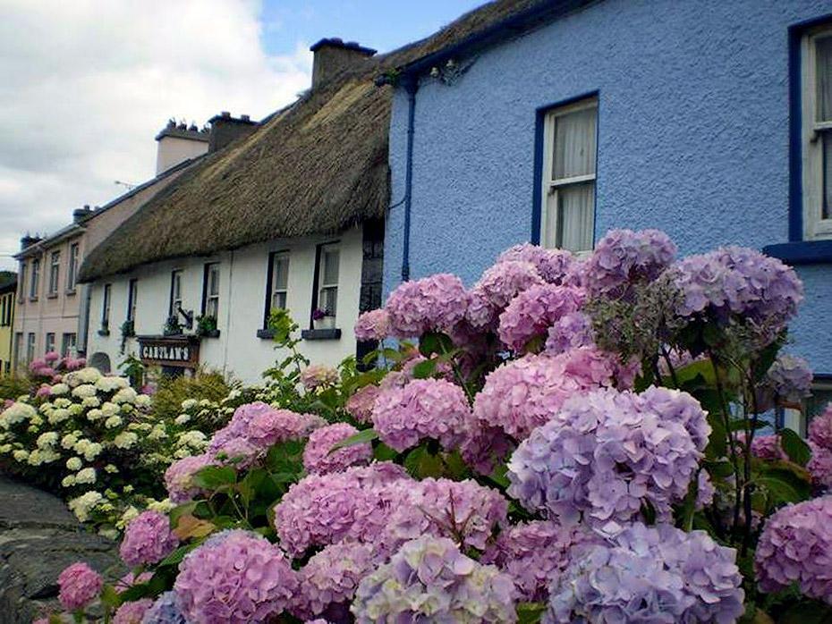 2012210735048554 Сказочное графство Девоншир