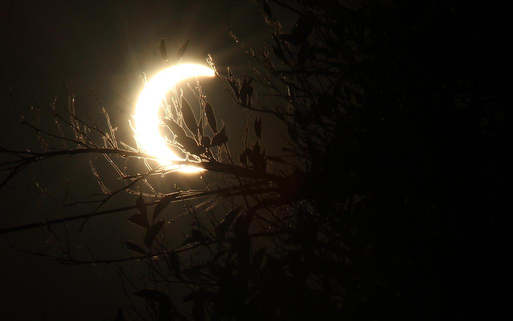 7238642910 cdd836bfb1 b 15 фактов о солнечных затмениях