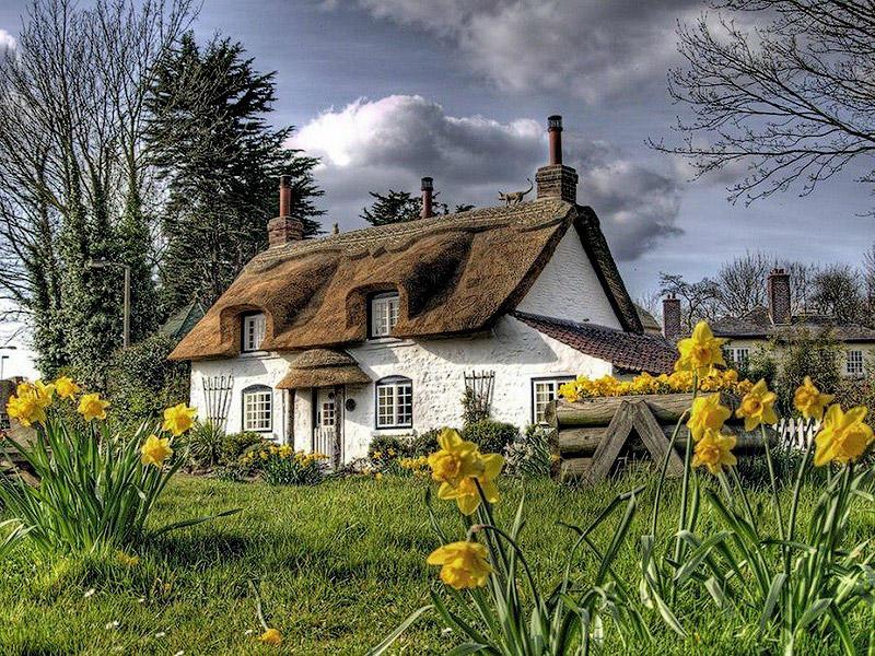 BIGPIC5 Сказочное графство Девоншир