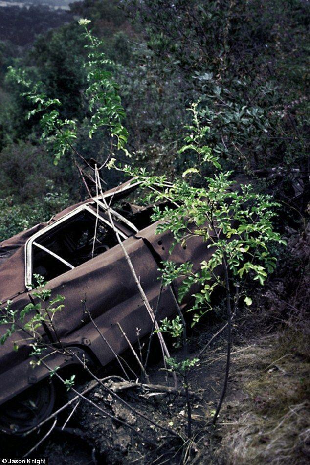 DeadMansCurve10 Раритетные автомобили на обрывах шоссе «Малхолланд Драйв»