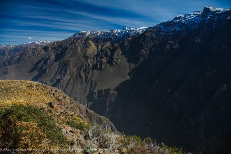 colca01 800x533 Спускаемся в глубочайший каньон на Земле