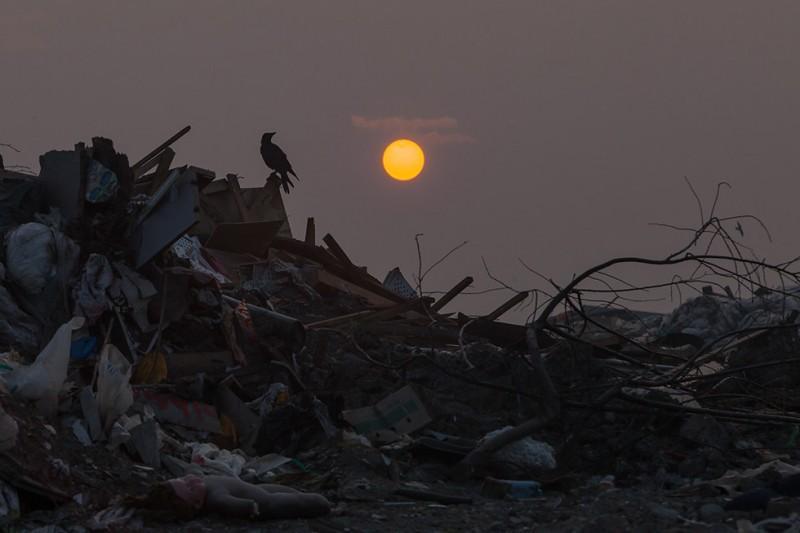 Сваливаем: Репортаж с крупнейшей в Новосибирске свалки мусора