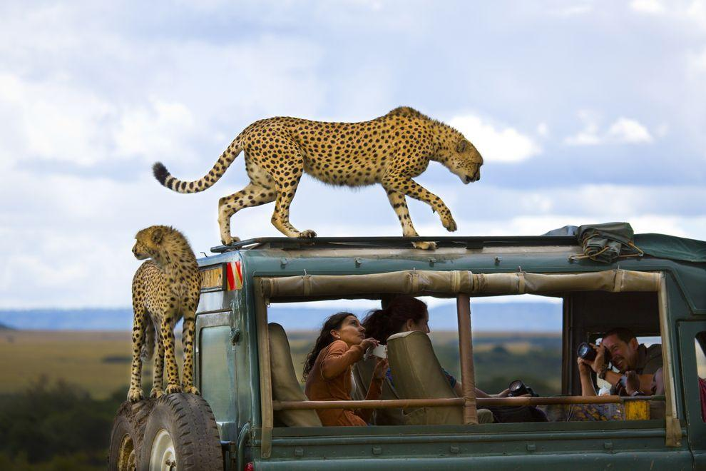 natgeocontest03 Лучшие фотографии о путешествиях от National Geographic