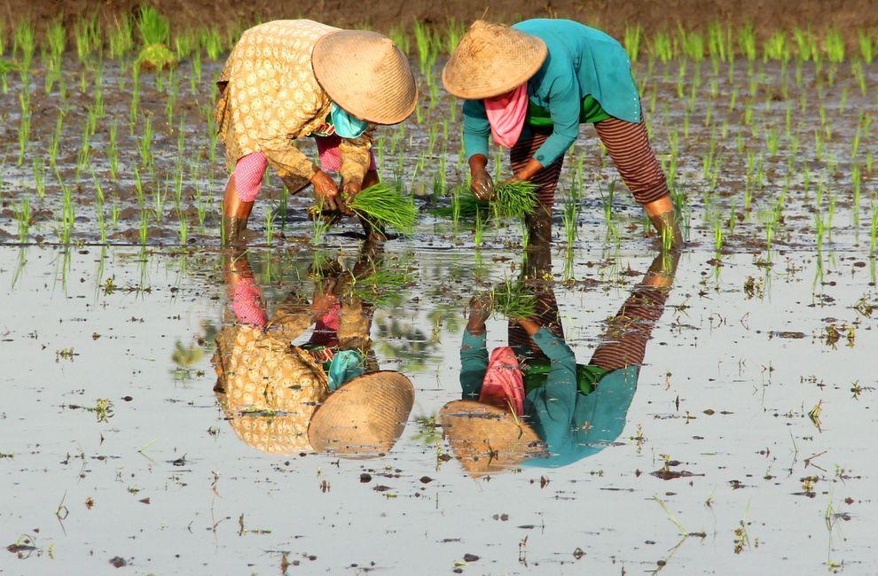 natgeocontest31 Лучшие фотографии о путешествиях от National Geographic
