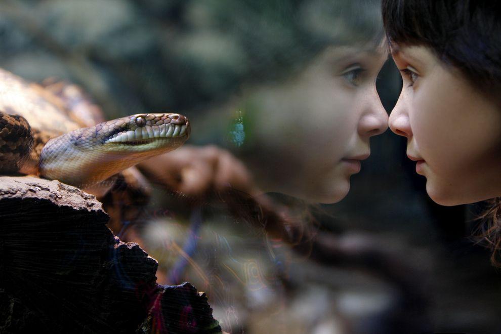 natgeocontest42 Лучшие фотографии о путешествиях от National Geographic