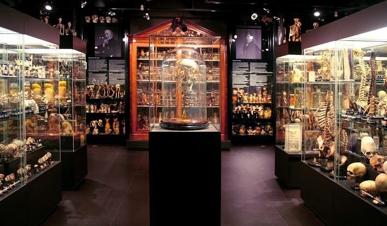 strangemuseums01 Самые необычные музеи Амстердама