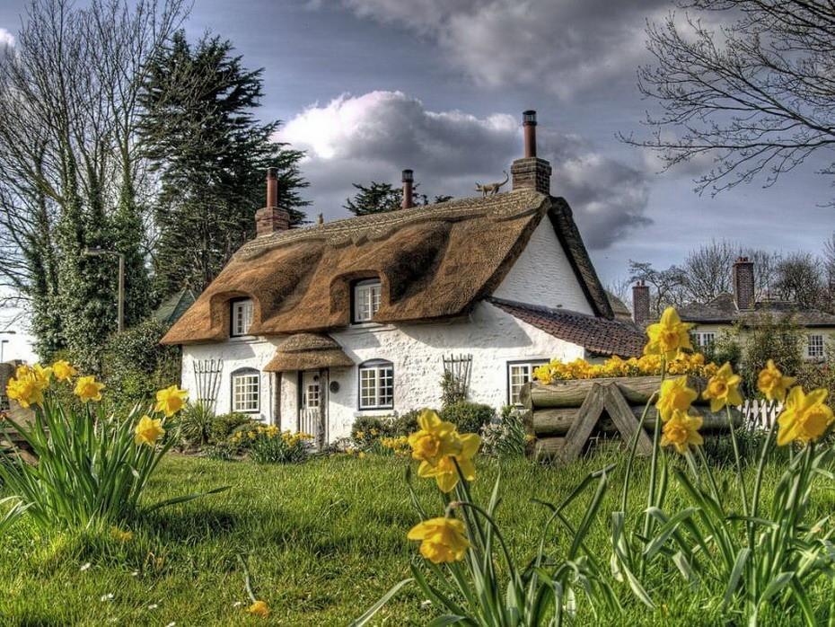thatch01 Сказочное графство Девоншир